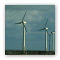 new study takes out wind